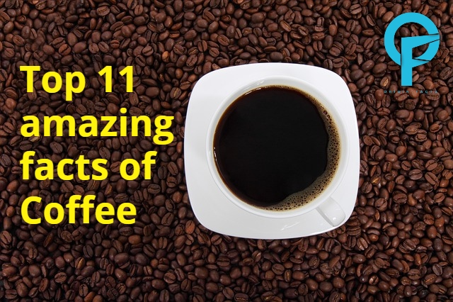 Top 11 amazing facts of Coffee